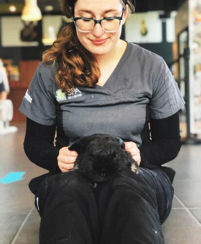 Bien-être des animaux - SPA Estrie - La Société protectrice des animaux de l'Estrie - Organisme de charité soucieux du bien-être des animaux
